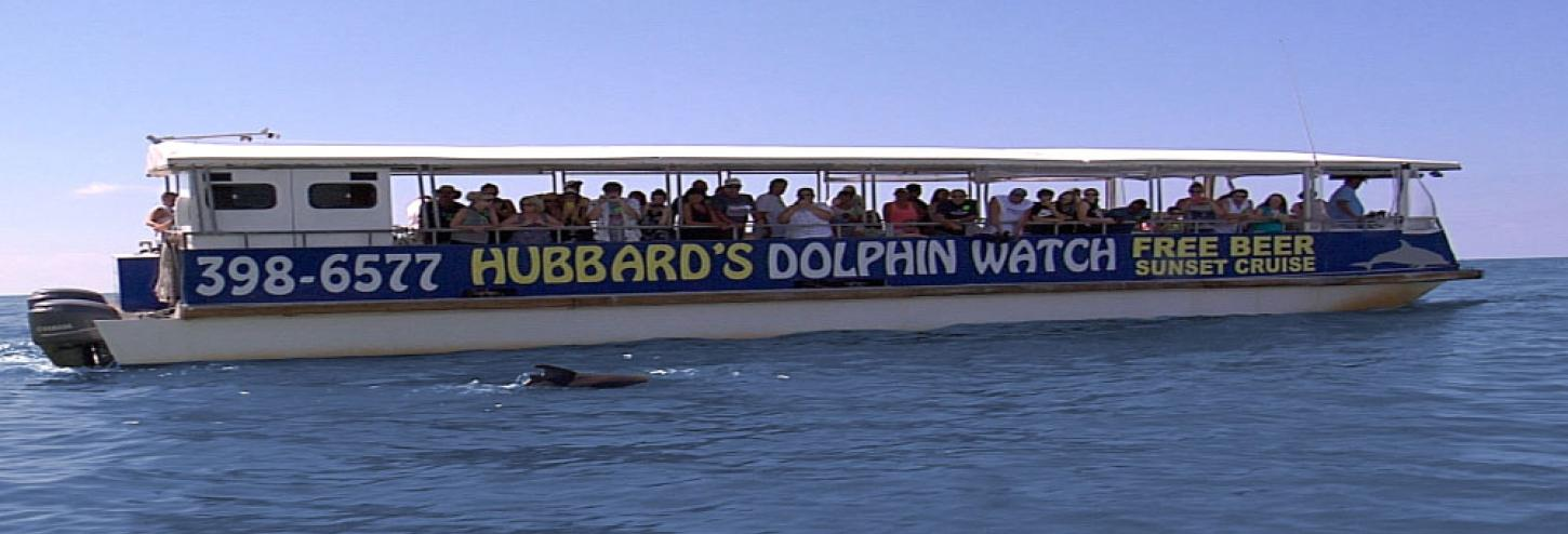 Hubbard's Dolphin Watch